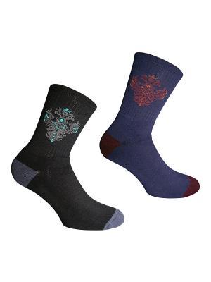 Носки, 2 пары Master Socks. Цвет: черный, серый