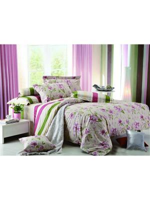 Постельное белье Sangria 2,0 сп.Euro Amore Mio. Цвет: бежевый, зеленый, розовый