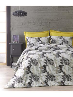 Комплект постельного белья OLIVIA сатин, 200ТС, 100% хлопок, евро ISSIMO Home. Цвет: бежевый