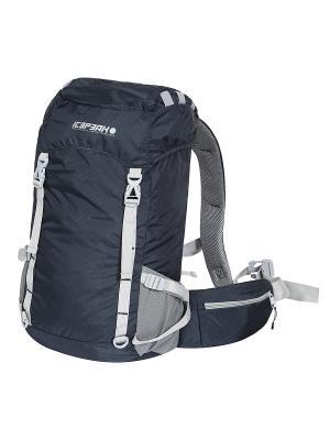 Рюкзак Icepeak. Цвет: темно-синий