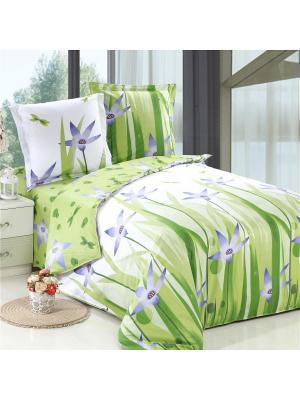 Постельное белье Vdohnovenie Семейный Amore Mio. Цвет: белый, зеленый, голубой