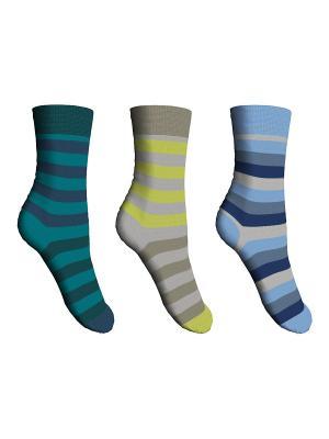 Носки 3 пары Master Socks. Цвет: хаки, голубой, морская волна