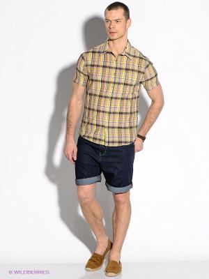 Рубашка F5. Цвет: желтый, антрацитовый, бордовый