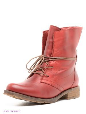 Ботинки Tamaris. Цвет: красный