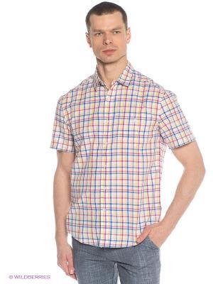 Рубашка Finn Flare. Цвет: молочный, фуксия, желтый, синий