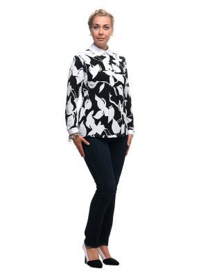Блузка OLSI. Цвет: черный, белый