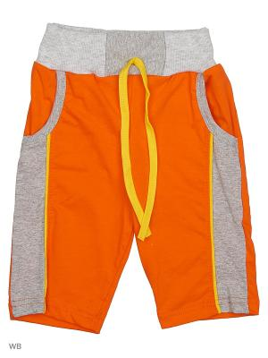 Шорты Babycollection. Цвет: оранжевый