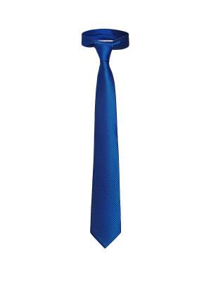 Классический галстук Между делом в диагональную полоску Signature A.P.. Цвет: синий, черный