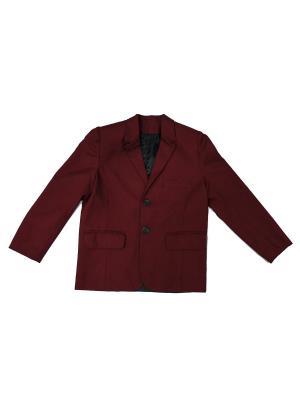 Пиджак НИВ. Цвет: бордовый
