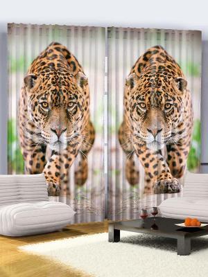 Комплект фотоштор Леопарды, кошки на красной крыше под Луной, чёрно-белые тигры, 290*265 см Magic Lady. Цвет: бежевый, оранжевый, черный, зеленый, серый
