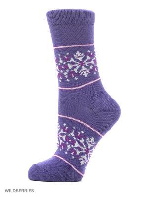 Носки HOSIERY. Цвет: сливовый