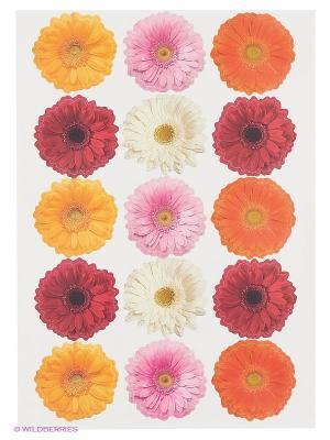 Герберы летние DECORETTO. Цвет: желтый, белый, красный, оранжевый, розовый