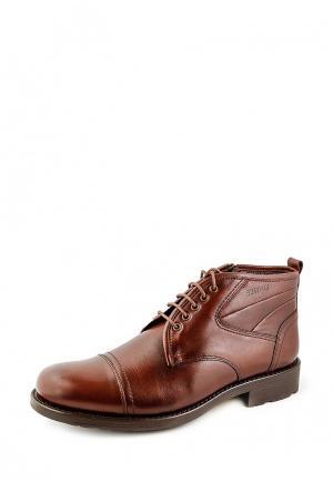 Ботинки классические Greyder. Цвет: коричневый