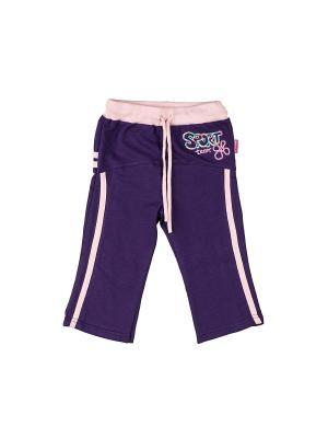 Спортивные бриджи DAMY-M. Цвет: фиолетовый
