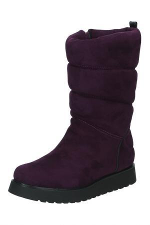 Полусапоги Dino Ricci Trend. Цвет: фиолетовый