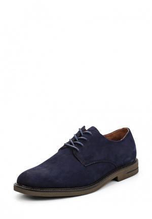 Туфли Polo Ralph Lauren. Цвет: синий
