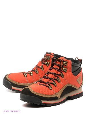 Ботинки Ascot. Цвет: терракотовый