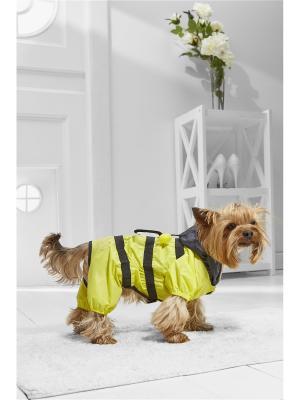 Дождевик Пчелка Майя для маленьких пород собак весом 3-6 кг и длиной спинки около 30 см Nothing but Love. Цвет: желтый, салатовый, черный