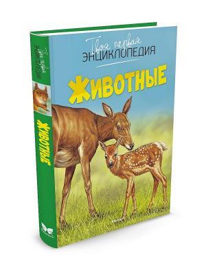 Животные Издательство Махаон. Цвет: голубой