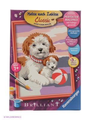 Раскрашивание по номерам Собака со щенком Ravensburger. Цвет: розовый