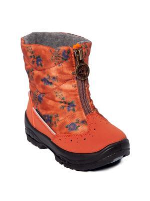 Сапоги Alaska Originale. Цвет: оранжевый