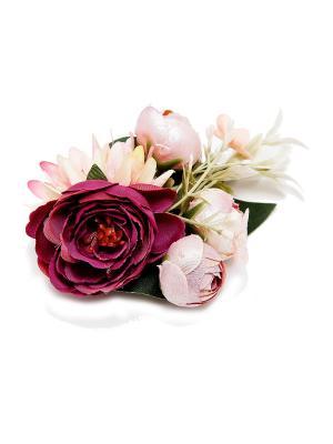 Резинка Kameo-bis. Цвет: розовый, кремовый, фиолетовый