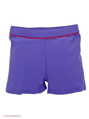 Плавки Lowry. Цвет: фиолетовый