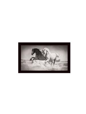 Скорость В788 Картина в раме 20х50 PROFFI. Цвет: серый, белый, черный