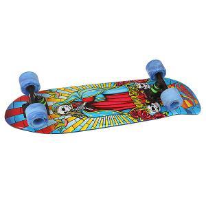 Скейт мини круизер  Dinghy Osteon Assorted 8.25 x 28.5 (72.4 см) Landyachtz. Цвет: мультиколор