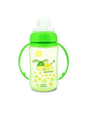 Поильник обучающий с силиконовым носиком и ручками, 320 мл. 6+, цвет: зеленый Canpol babies. Цвет: зеленый