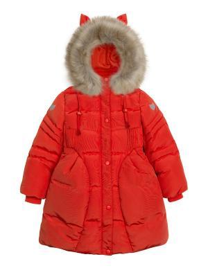 Пальто PELICAN. Цвет: оранжевый