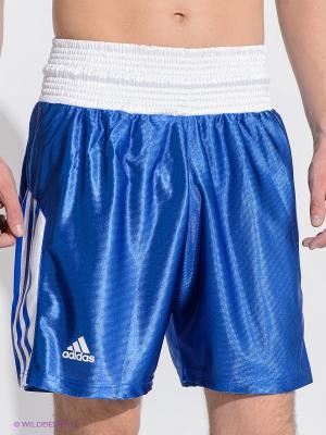 Шорты боксерские Amateur Boxing Shorts Adidas. Цвет: синий, белый