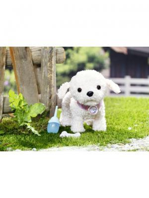 Игрушка BABY born Собака Пудель, дисплей ZAPF. Цвет: розовый, белый