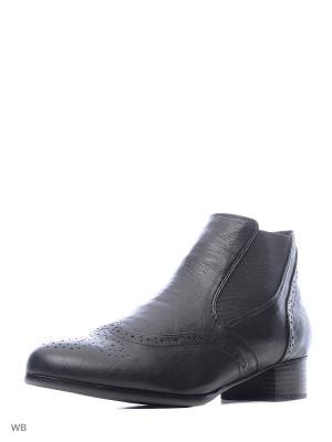 Ботинки Carla Verotti. Цвет: черный