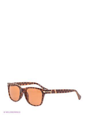 Солнцезащитные очки TM 500S 02 Opposit. Цвет: коричневый, рыжий