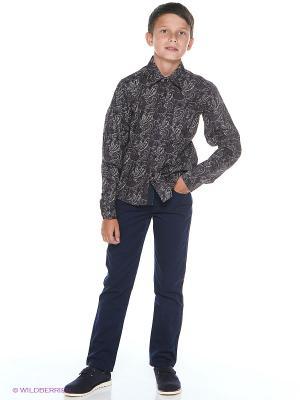 Рубашка SILVER SPOON. Цвет: черный