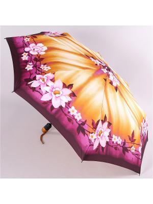 Зонт Airton. Цвет: бежевый, фиолетовый