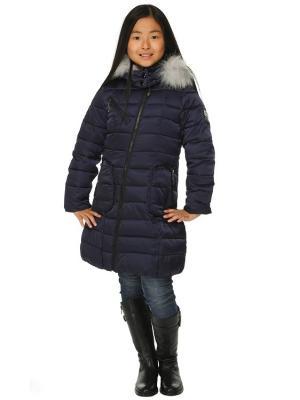 Пальто для девочек TOPKLAER. Цвет: синий
