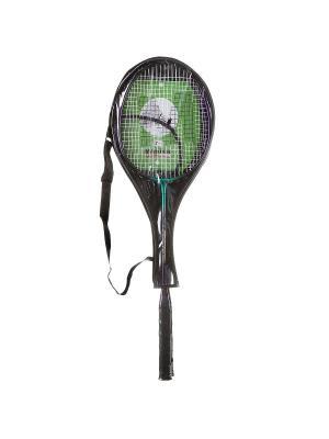 Бадминтонная ракетка алюминиевая 2шт и чехол на молнии Master BONNA. Цвет: черный, зеленый, темно-фиолетовый