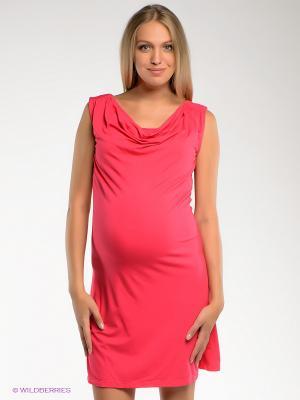 Платье Noppies. Цвет: малиновый