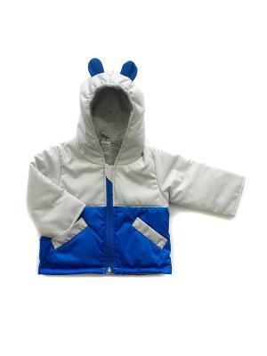 Куртка Микки Дашенька. Цвет: серый, синий