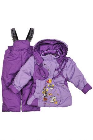 Комплект Lemming. Цвет: фиолетовый