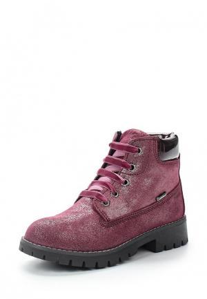 Ботинки Primigi. Цвет: фиолетовый