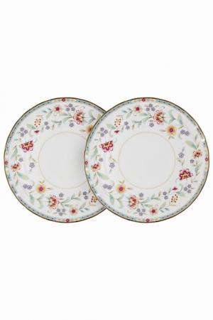 Набор из 2-х обеденных тарелок Colombo. Цвет: мультицвет