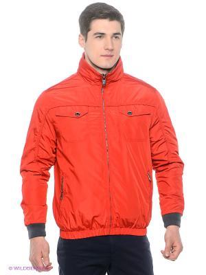 Куртка Stonecast. Цвет: красный, синий