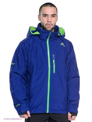 Куртка Mens Winter 2L Gtx Jacket Hero Adidas. Цвет: синий