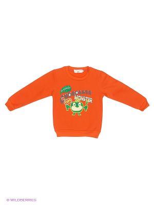 Джемпер Happy Bear. Цвет: оранжевый