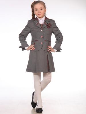 Пиджак UniStyle. Цвет: серый, красный