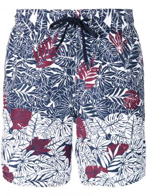 Пляжные шорты с пальмовым принтом Z Zegna. Цвет: многоцветный