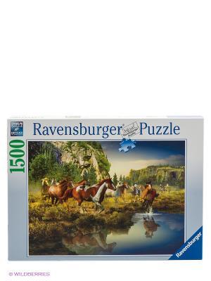 Пазл Дикие лошади Ravensburger. Цвет: голубой